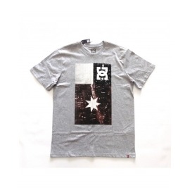 Camiseta DC Core NYM Flar Grey