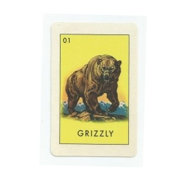 Adesivo Grizzly Card - (12,5cm x 8cm)