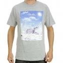 Camiseta Primitive Altitude - Cinza